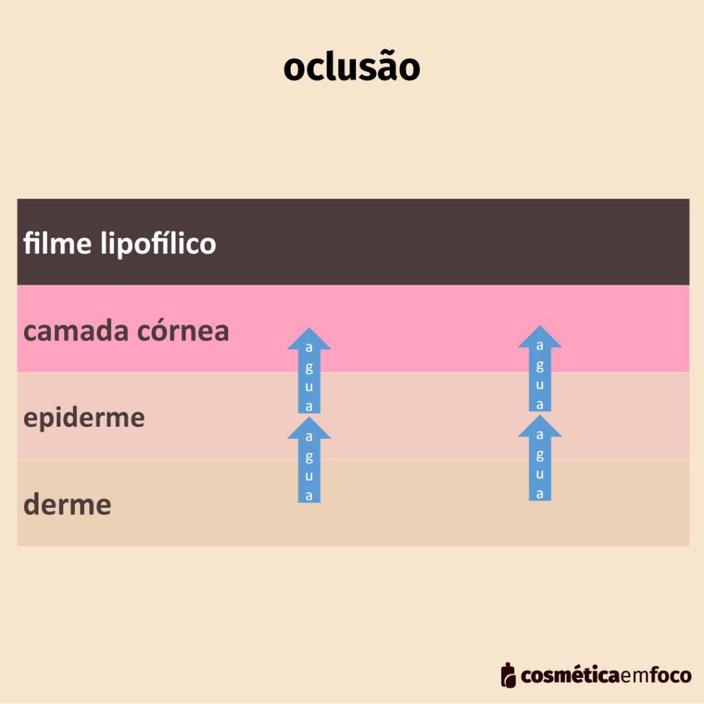 mecanismo de oclusão na hidratação da pele