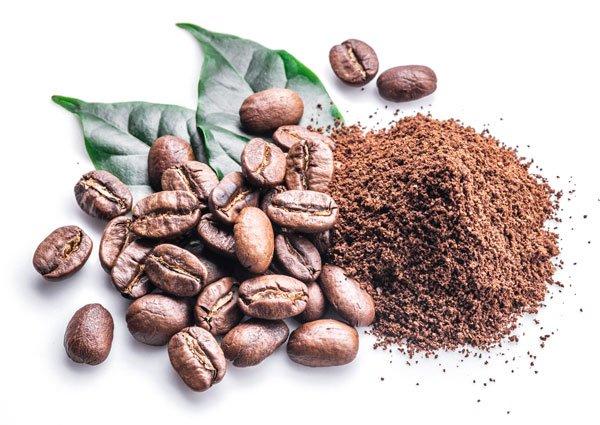 A cafeína é extraída dos grãos de café e outras plantas.